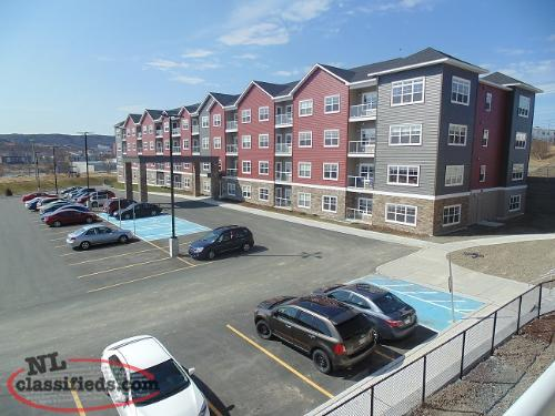 Beautiful Two Bedroom near Quidi Vidi!