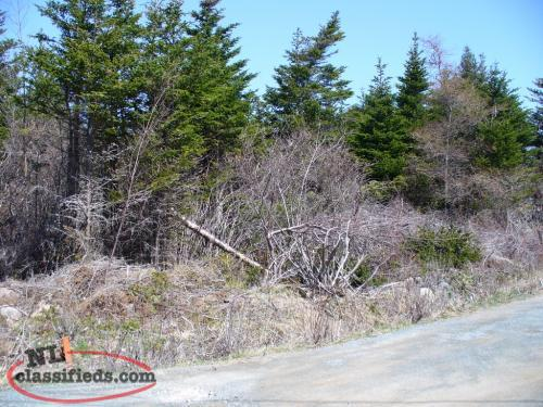 Building Lot for Sale - Conception Harbour