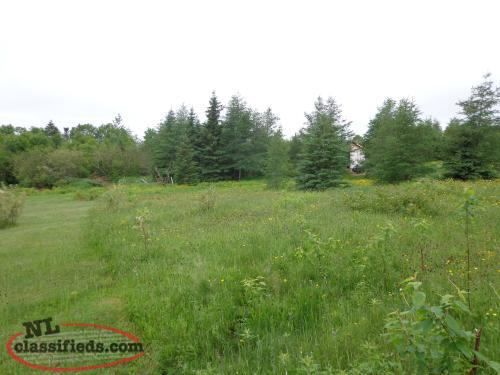 Beautiful 1/2 acre in cormack