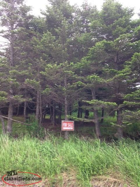 Land for Sale Greenhill, Burin