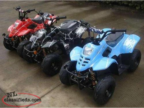 Chinese Dirt Bike, ATV & UTV, Parts & Service/Repair