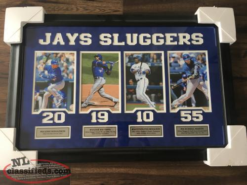 Authentic Signatures Bluejays framed picture