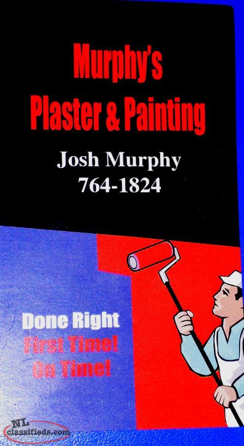 Experienced Plaster and Painter