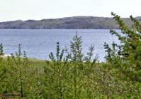 Ocean View Land - 222 Neck Rd, Bay Roberts, NL - MLS# 1175519