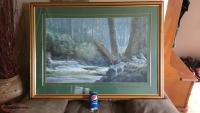 Framed print called Jewel of the rain forest