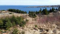 Ocean View Land - 115-119 Cove Rd- Bryants Cove, NL - MLS# 1173694