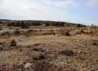 Affordable Ocean View Land - Seymours Rd, Spaniards Bay - MLS# 1182646