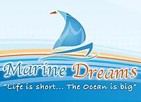 Boat Detailing and Fiberglass Repair by Marine Dreams