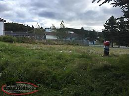 Land - Building Lot - Fully Developed Mature Lot with Shed - Ferryland