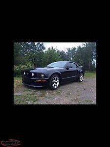 For Sale A 2009 Ford Mustang GT/CS Convertible