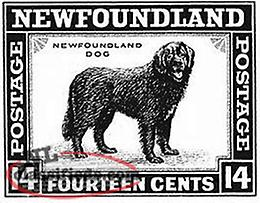Used Newfoundland Stamp Collection