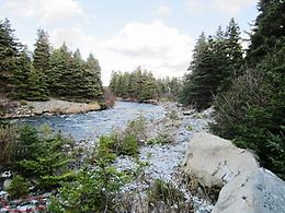 Waterfront Lot - 2 Gully Path, Harbour Grace - MLS# 1187022