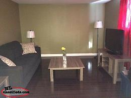 Specious one bedroom basement apartment