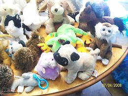 Webkinz and misc stuffies