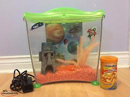 Fish aquarium and accessories