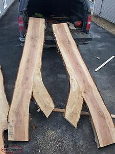 Live Edge Slabs and Lumber