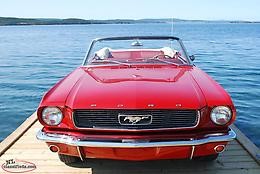 1966 Ford Mustang-Mint