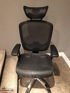 Mesh Ergonomic Desk Chair With Head Rest