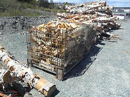 Bins of birch firewood for sale