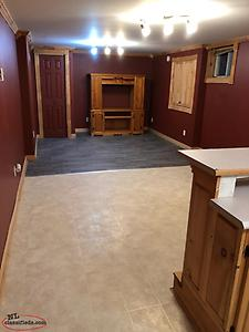 Spacious one bedroom basement apartment for rent in Bay Roberts