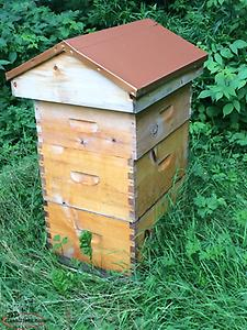 Quality Beehives for Sale (REDUCED)