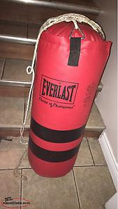 Everlast Boxing Bag Gloves and Rope