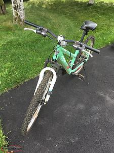 Ladies Bicycle Excellent Condition