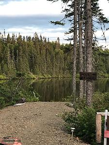 Beautiful Cabin Land For Sale