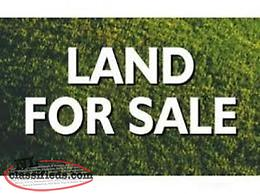 6.66 Acres of Land For Sale!!!
