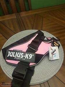 Juluis k9 harness