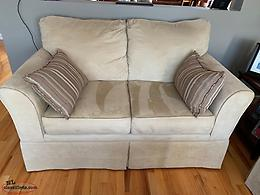 Love Seat & Couch