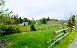 Cleared Serviced Lot in the centre of Clarkes Beach, NL
