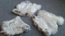 3 Natural Color Snowshoe Hare Rabbit Pelts