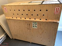 XL Travel Dog Crate