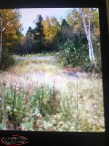 "Building Lot For Sale In Embree ""ANXIOUS TO SELL"""