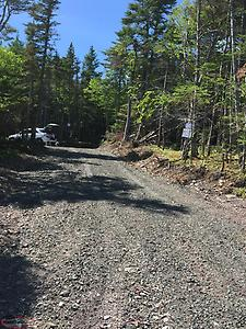 Large Cabin Lots for sale in Placentia Junction. Approx. THREE (3) ACRES each