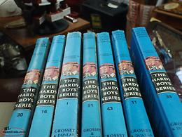 hardy boy books and bobbsey twins book