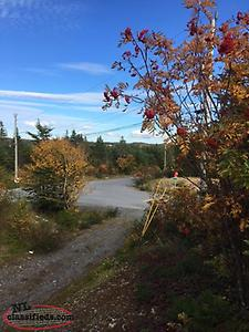 Corner Lot - Country Living - Cabin/Cottage/New Home property For sale