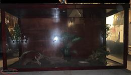 Very large terrarium snake reptile enclosure 390 gallon