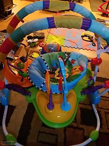 baby Einstein jumperoo playset.