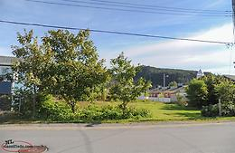 Jubille Road: Land For Sale In Placentia!!