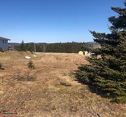 **LARGE SERVICED LOT** 97 Neck Road, Bay Roberts - MLS #1226968