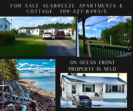 Oceanfront Commercial Properties! Room for Expansion for the Eager Entrepreneur