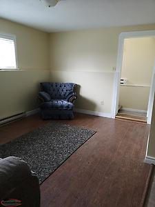 1 Bedroom Basement apartment