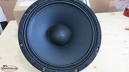 Mesa Boogie Walkabout Scout 12 Replacement Speaker